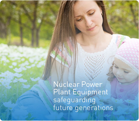 Nuclear Power Plant Equipment
