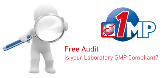 Free GMP Audit