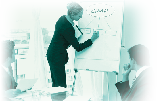 1MP Quality Management System Training
